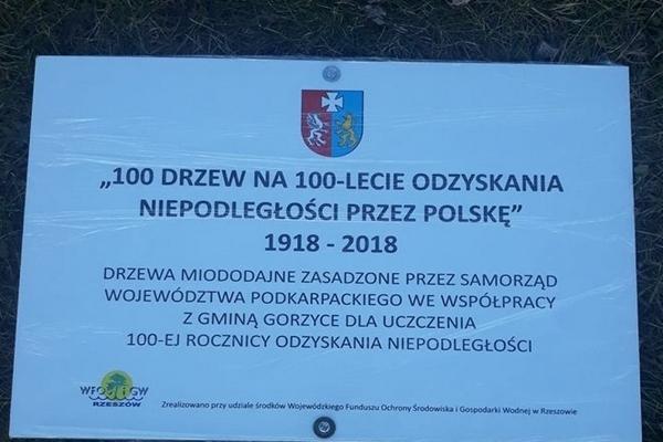 100 LIP DLA SOKOLNIK